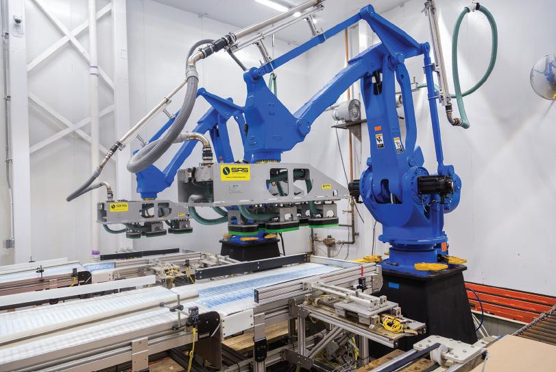 Hamer Robotic Ice Palletizer